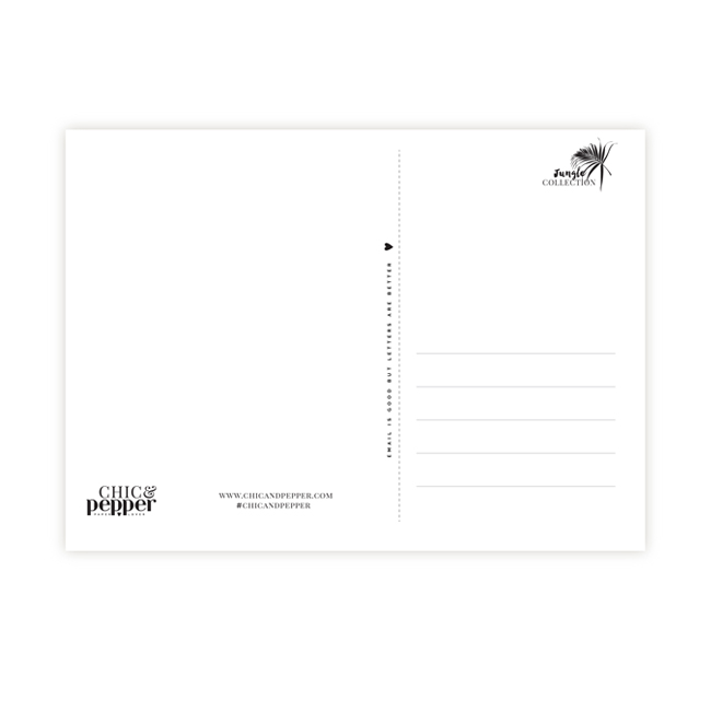 verso cartes postale chic and pepper
