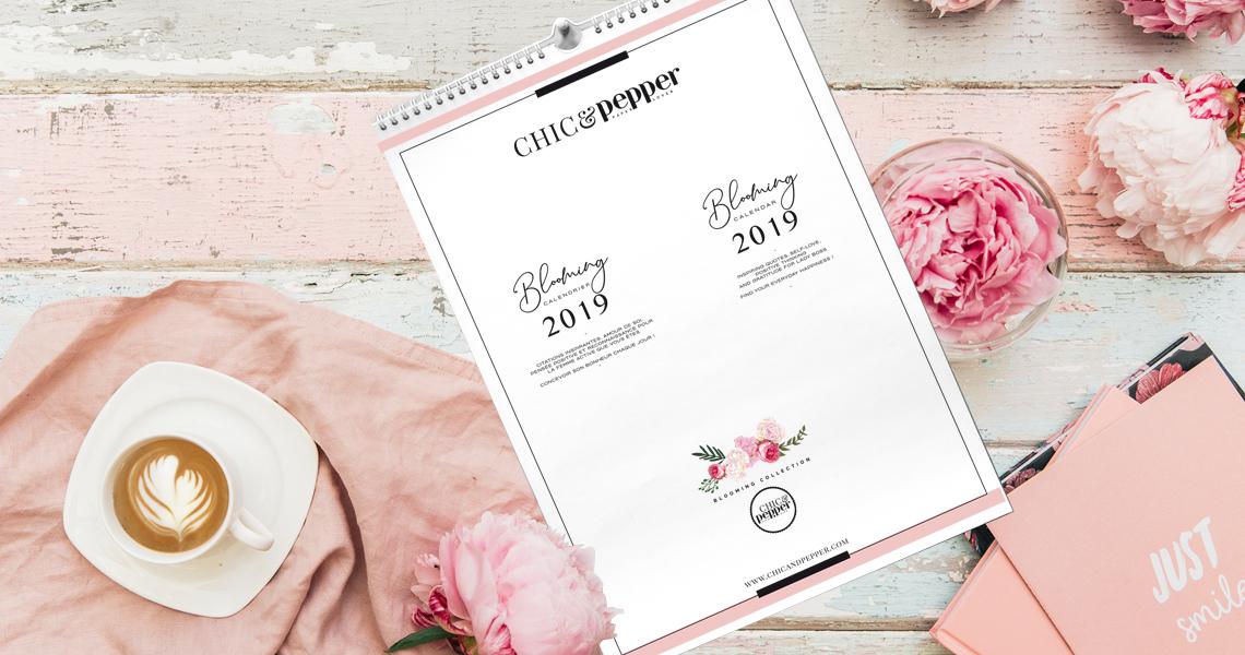 SLIDE calendrier 2019 1